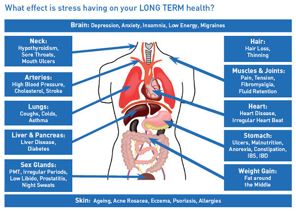major causes and effect of stress Stress overload causes loss of mental agility in several ways, since the release of stress hormones has a negative effect on the functioning of certain brain areas therefore, when an individual is stressed, they may experience memory loss, confusion, and lack of concentration.