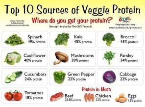 10 Sources of Veggie Protein