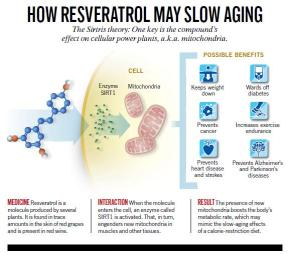 How-resveratrol-may-slow-aging